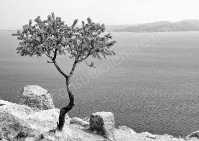 Grèce 2007