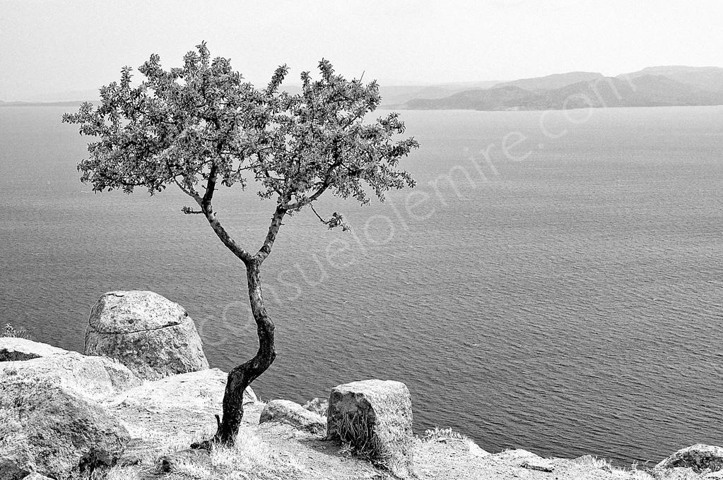 Grecia 2007