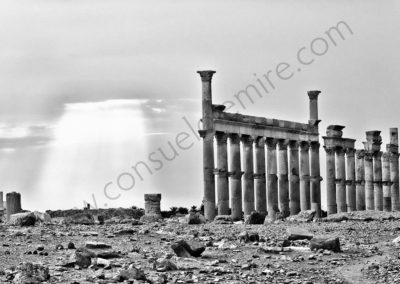 Palmyre - Syrie 2006